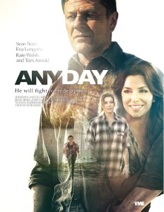 any-day-poster